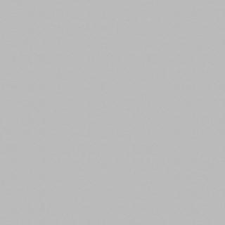 ДСП Swiss Krono D881 PE Алюминий, 2800х2070х18