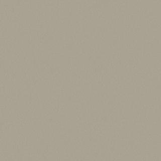 ДСП Swiss Krono 2899 PE Титан, 2800х2070х16