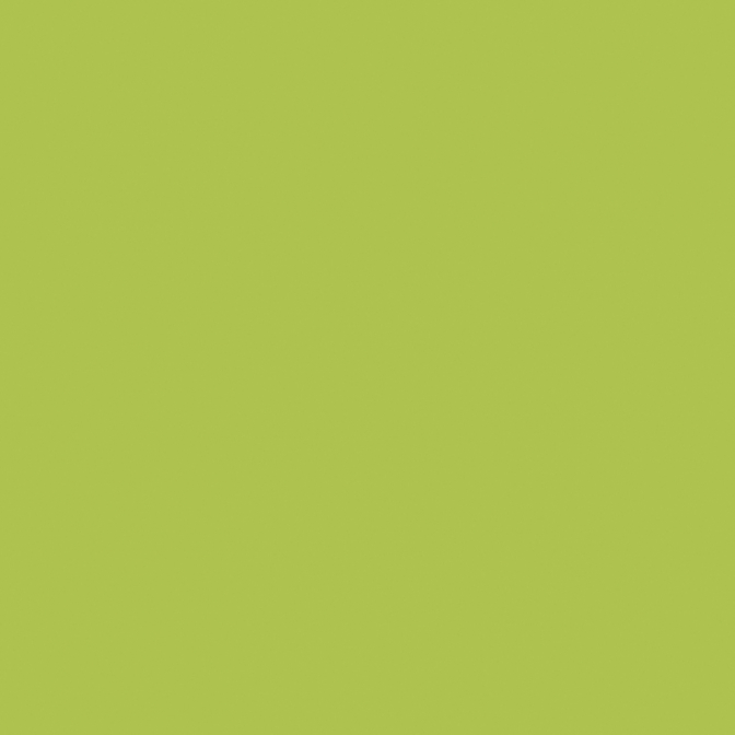 ДСП Swisspan 0413 BS Лайм, 2750х1830х16