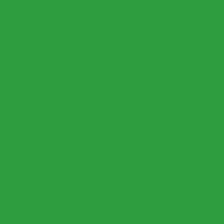 ДСП Egger U600 ST9 Зелёный май, 2800х2070х18